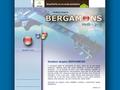 Náhled webu Bergamons