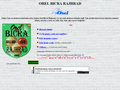 Náhled webu Orel Bicra Rajhrad