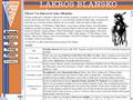 Náhled webu Lakros Blansko