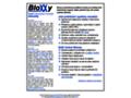 Náhled webu Bloxxy