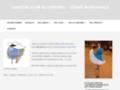 Náhled webu Taneční klub Blueberry