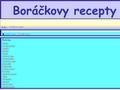 Náhled webu Boráčkovy recepty