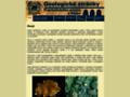 Náhled webu Prácheňské muzeum v Písku - Geologické stránky
