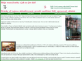 Náhled webu Termiter