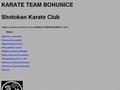 Náhled webu Shotokan karate team Bohunice