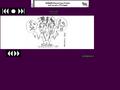 Náhled webu Pako komiks
