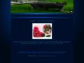 Náhled webu Světluška - pro kočky, o.s.