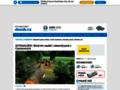 Náhled webu Rychnovský deník
