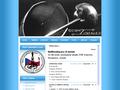 Náhled webu Sportovního šerm Sokol Brno - Židenice