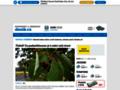 Náhled webu Šumperský a jesenický deník
