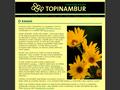 Náhled webu RK Topinambur