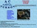 Náhled webu AC Turnov