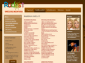 Náhled webu Umělecká agentura Radost
