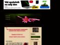 Náhled webu Pěstování hvězdníků (Amarylis)
