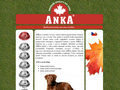 Náhled webu Anka