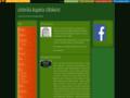 Náhled webu Arashit