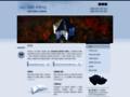 Náhled webu Ing. Jiří Pípal – auditorské služby