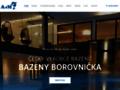 Náhled webu A&M Borovnička