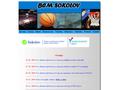 Náhled webu Basketbalové centrum mládeže Sokolov
