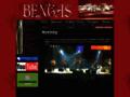 Náhled webu Bengas