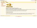 Náhled webu Brailcom