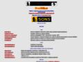 Náhled webu Brailnet