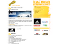 Náhled webu Česká asociace extrémních sportů