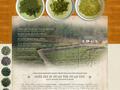 Náhled webu Čínské čaje