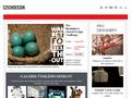 Náhled webu Český design