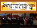 Náhled webu Mezinárodní dudácký festival ve Strakonicích
