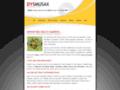 Náhled webu Dysmusax