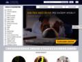 Náhled webu Evropská databanka, informace o firmách