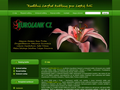 Náhled webu Eurolank