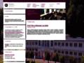 Náhled webu Galerie umění Karlovy Vary