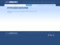 Náhled webu Suzuki GSX-R 1100