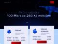 Náhled webu Internext