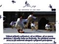 Náhled webu Jaro