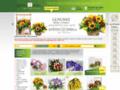 Náhled webu Květiny Dnes