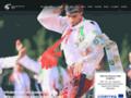 Náhled webu Lednicko - Valtický areál