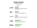 Náhled webu Mediaworks