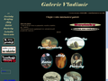 Náhled webu Galerie Vladimír