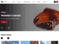 Náhled webu Muzeum jihovýchodní Moravy
