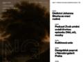 Náhled webu Národní galerie v Praze