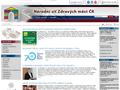 Náhled webu Národní síť Zdravých měst České republiky (NSZM ČR)