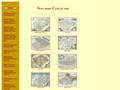 Náhled webu Staré mapy Českých zemí
