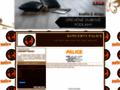 Náhled webu Palice
