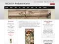 Náhled webu Mignon Pediatrie Karlín