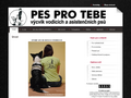 Náhled webu Pes pro tebe
