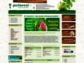 Náhled webu Pěstování.in - Průvodce světem pěstování
