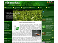 Náhled webu Pěstování tabáku